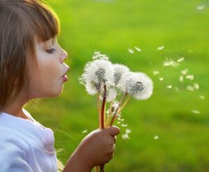 Средства от аллергического насморка