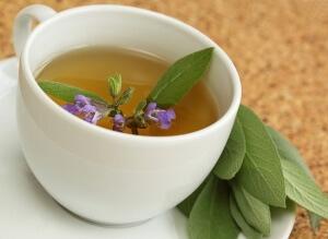 Шалфей от кашля - рецепты и особенности применения