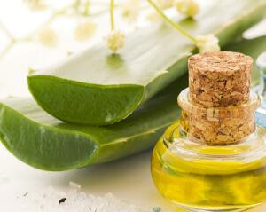 Лучшие народные рецепты их меда и алоэ для лечения кашля