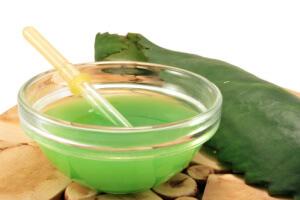 Сок каланхоэ – популярный и эффективный народный метод от насморка