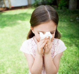 Аллергический насморк – это аллергическое воспаление слизистой оболочки носа