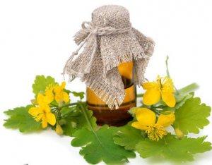 Правильное применение чистотела – залог быстрого выздоровления