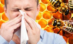 Настойка прополиса – эффективное средство для лечения ЛОР-заболеваний