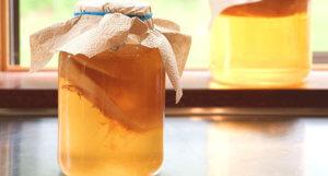 Чайный гриб – эффективное народно средство от ангины