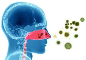Чаще всего заболевания гортани вызывает бактериальная инфекция