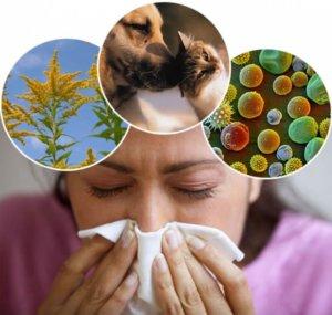 Препарат показан для устранения симптомов аллергических заболеваний