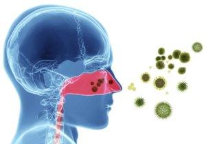 Вызвать ринит могут вирусы, бактерии и аллергены