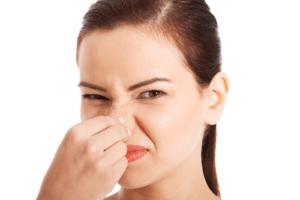 Гнойный запах их носа свидетельствует о бактериальной инфекции
