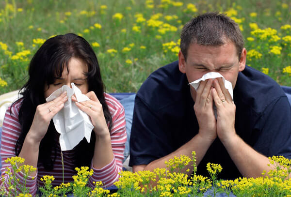 Спрей от аллергического ринита: список лучших и их действие