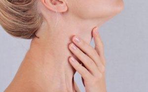 Особенности строения горла