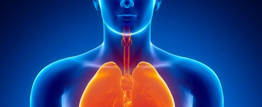 Заболевание верхних дыхательных путей, диагностика, лечение, профилактика