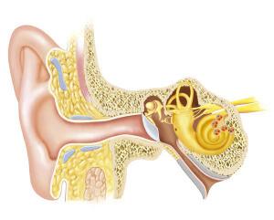 Назначение процедуры шунтирования уха