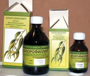 Хлорофиллипт масляный или спиртовой: что выбрать