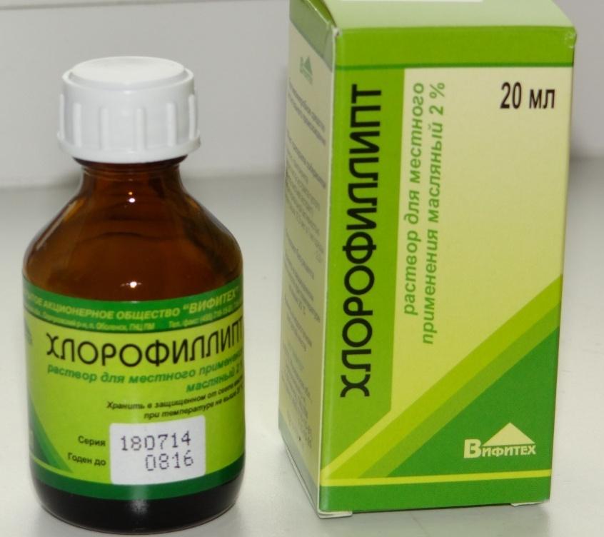Хлорофиллипт масляный для детей: назначение и применение