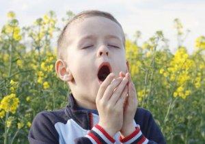 Аллергический кашель – это не болезнь, а лишь специфический симптом проявления аллергии