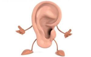 Ухо – это орган, который предназначен для восприятия звуковых колебаний