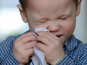 Причиной насморка у детей может быть бактерия, вирус или аллерген