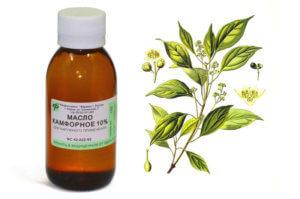 Камфорное масло оказывает антисептическое и противовоспалительное действие