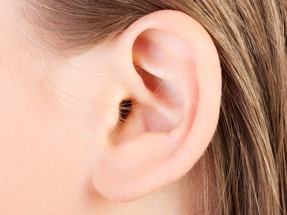 Строение, функции и болезни среднего уха