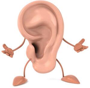 Наружно ухо состоит из наружного слухового прохода и ушной раковины