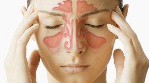 УЗИ проводится для диагностики инфекционно-воспалительных заболеваний лобных и верхнечелюстных пазух