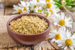 Отвар из цветков аптечной ромашки обладает противовоспалительными свойствами
