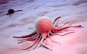 Онкологи утверждают, что весомым фактором риска развития рака является курение и алкоголь