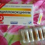 Оциллококцинум
